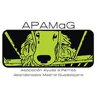 Apamag logo